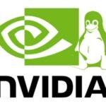 Nvidia Linux