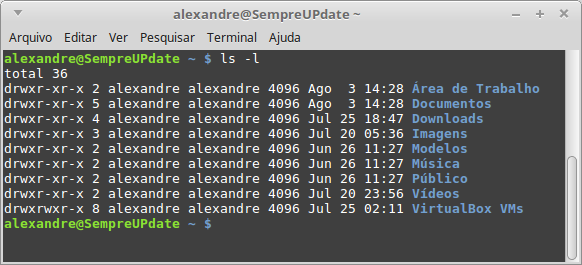 como-funciona-a-Linha-de-Comando-do-Linux-comando-ls-l