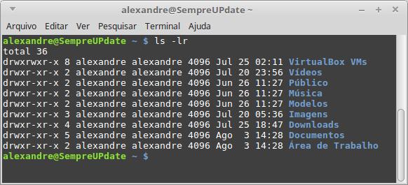 como-funciona-a-Linha-de-Comando-do-Linux-comando-ls-lr