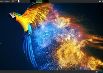 Parrot 4.9 Security chega com o Kernel 5.5 e novo instalador