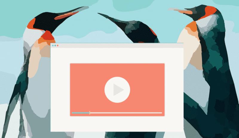 Cinco aplicativos de gravação de tela para Linux
