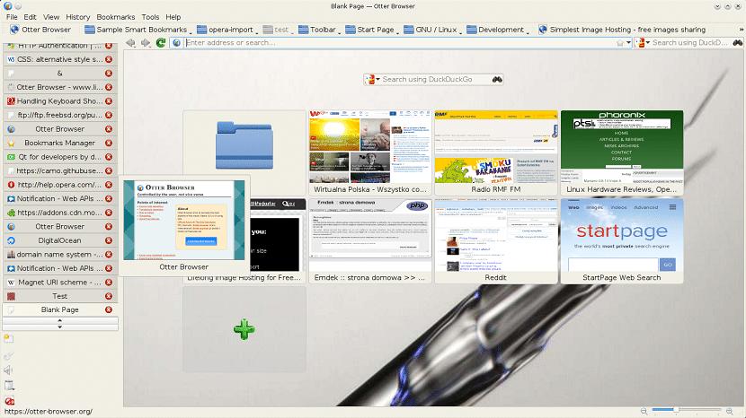 Como instalar o novo navegador Otter 1.0
