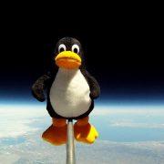 Como surgiu o Tux, mascote do Linux