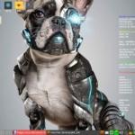 Puppy Linux