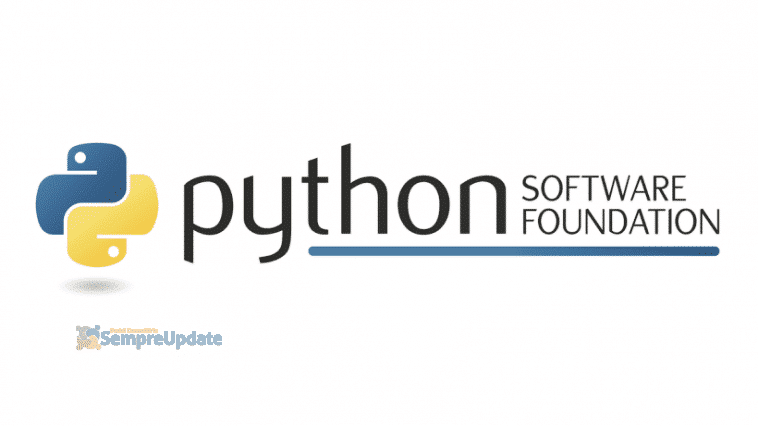 python-software-foundation-divulga-primeiro-balanco-anual