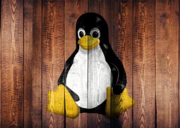 Linux 5.13-rc3 lançado com muitas correções