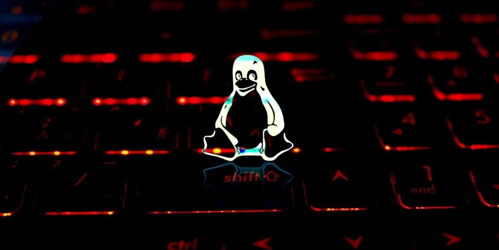 Linux 5.13 reverte e corrige bugs causados de propósito por desenvolvedores da Universidade de Minnesota