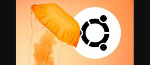 Ubuntu 22.04 LTS tem codinome revelado